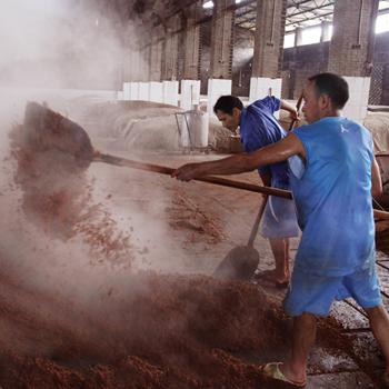 封藏大典:泸州老窖作为行业领袖的必然选择