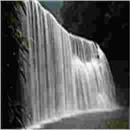 鼎信基酒:水质