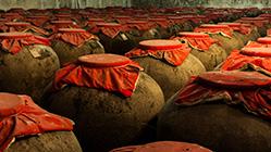 了解了原浆酒的生产过程,就明白了什么是真原浆酒